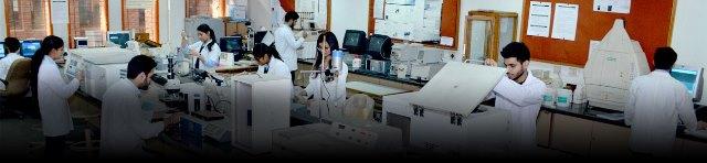Jaypee Institute of Information Technology Noida Gallery Photo 1