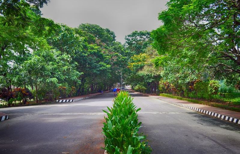 National Institute of Technology Calicut Gallery Photo 1